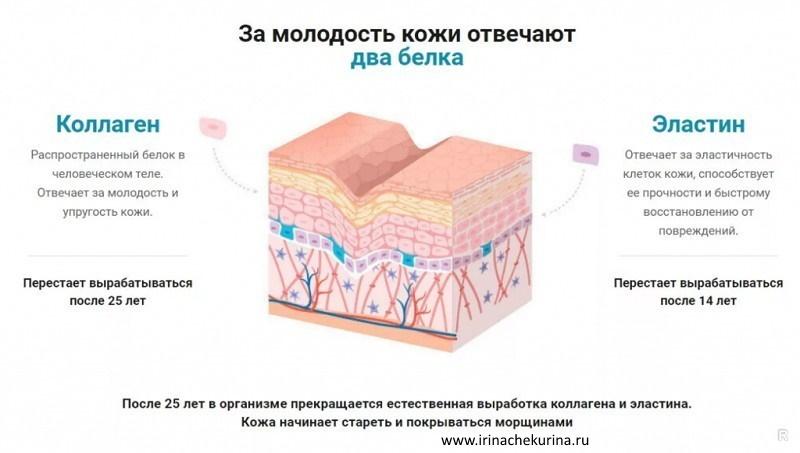 Kak sdelat' kozhu molodoj v domashnih uslovijah kakie belki otvechajut za process molodosti